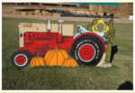 Marana Pumpkin Patch & Farm Festival